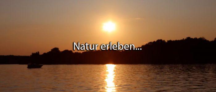 Natur Motoryacht erleben Ruhe Erholung Stille Havelseen Werder Havel See